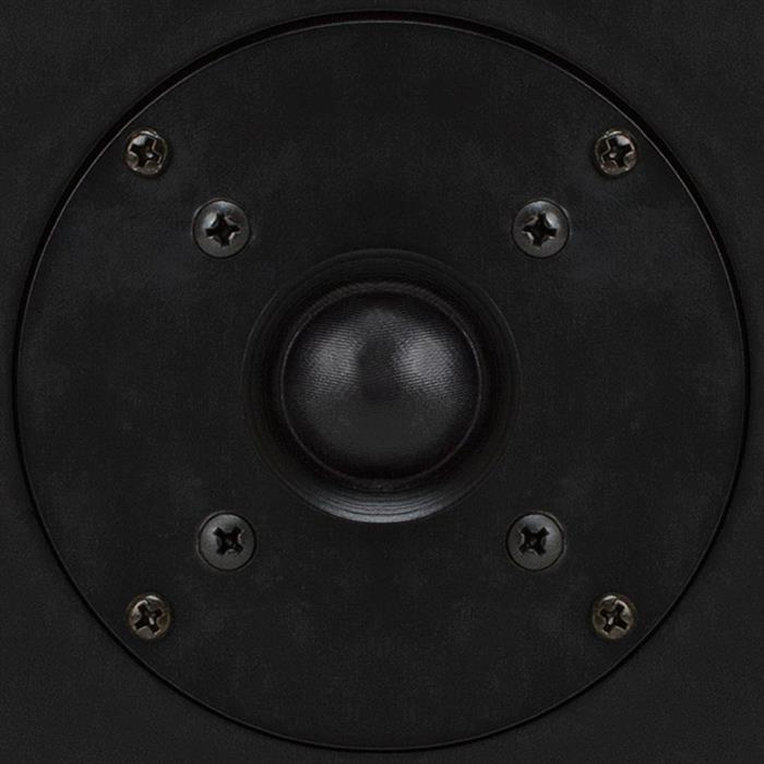 "6.5"" In-wall and In-Ceiling Central Speaker: Titanium Dome Tweeter - provides a very natural sound"