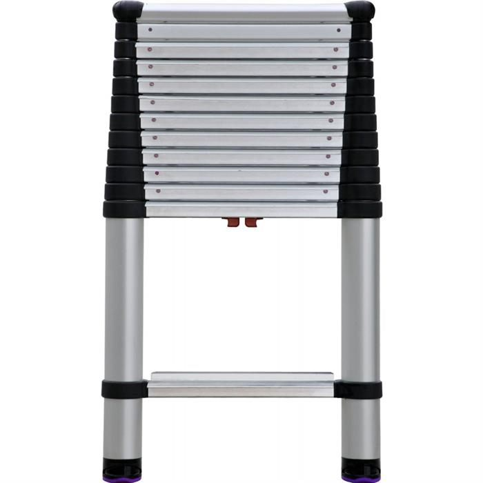 Telesteps 1600EP Professional Telescopic Ladder
